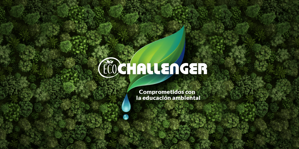 Blog Día internacional de la educacion ambiental